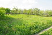 Дачный участок 6 сот.  10 км от Кишинева. Перспективная инвестиция!