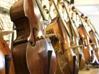 Instrumente cu coarde si componenete