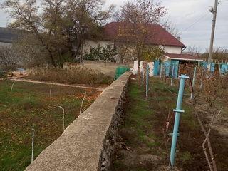 Продается капитальный дом с садом и виноградником на берегу Днестра