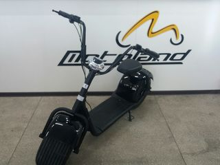 Другие марки Electro Scooter ECO