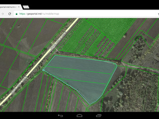 Vind 4.5 hectare de teren agricol la traseu,35000 euro hectaru,variante.