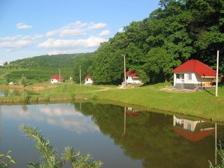 Озёра, Кодры, дома для отдыха, бизнес. 6 Га. Собственность.