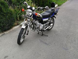 Viper TXM150-R