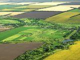 Cumpăr teren agricol de la 3-10 ha in apropiere de Soroca