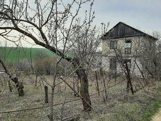 Vând urgent 12 ari și o casă în Criuleni(Onițcani)