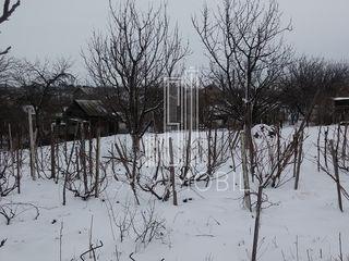 Teren pentru constructii - 6 ari, cu toate retelele, Î. P. Negnic, orasul Singera