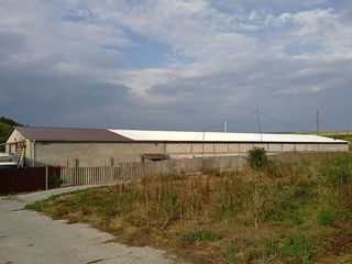 С/Х комплекс: Холодильник, склад, сушилка, сады, земля.
