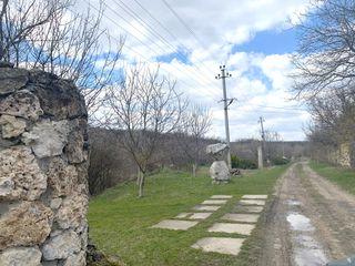 """Exclusiv!Trei terenuri lîngă mun.Chișinău!Aer Curat.Vile IP """"Crangul Privighetorilor.Соловьиная Роща"""