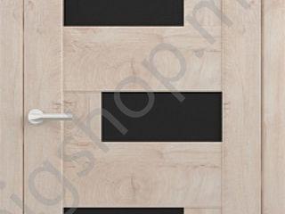 Usa de interior Albero Gavana stejar gold 600-900 mm (cu sticla neagra)