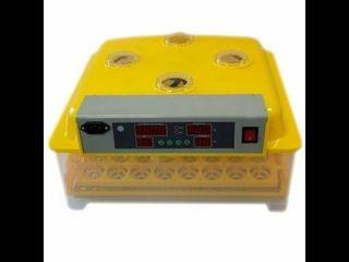 Incubator automat asel wq-48 garantie 1 an / livrare gratuita