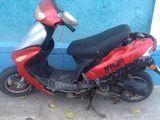 Viper Wind 80cc