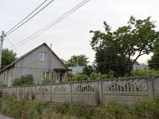 В Центре Сынджеры недалеко о Примэрии