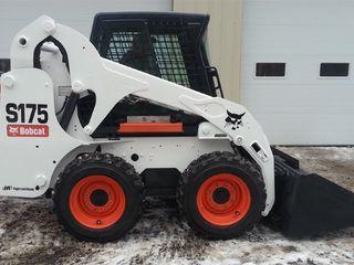 Servici bobcat 350 lei/ches/ transfer./ Каток. Compactot
