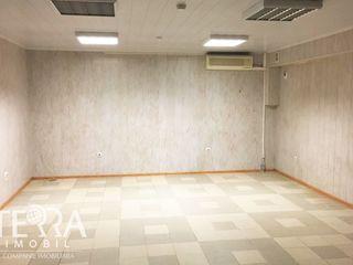 Buiucani, str. Ion Creangă, 86 m2, Reparație cosmetică