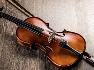 Caut vioară pentru începători