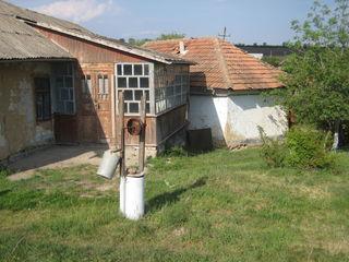 дом в Максимовке на центральной улице