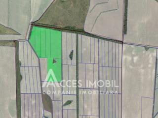 Lot de teren agricol 14 ha! Anenii Noi, Todireşti!