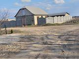 vind casa noua nefinisata din cotileti ,varianta albă r-nul Stefan-vodă sat Popeasca