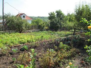Vand vila in regiunea Costiujeni, sector locativ  pret    23500 euro