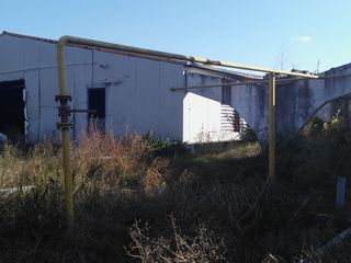 constructia fabricii de pasari