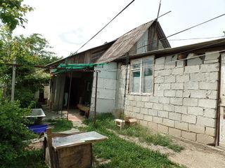 Жилой дом Мирений Ной.