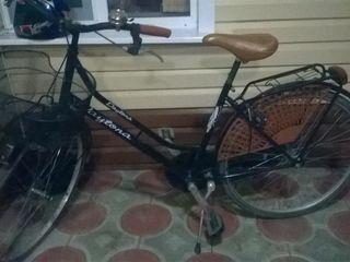 Dailona vand Bicicleta italiana