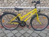 Alpine 6000