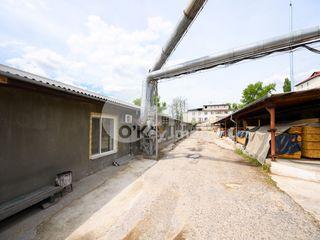 Spațiu pentru producere, 463 mp, Râșcani pe str. Petricani 926 €