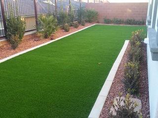 Мы предлагаем профессиональные услуги для вашего двора и зеленых насаждений!