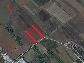 Teren agricol in suburbia Chisinaului com. Colonita.