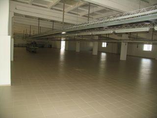 Коммерческие помещение для склада и производства с офисами!