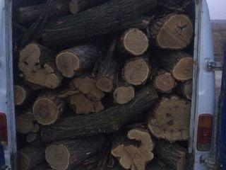 Lemn tare de foc (frasin, salcam, carpen, stejar)