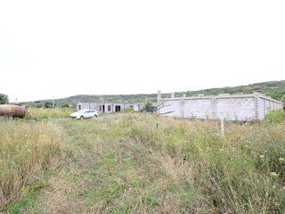 Teren cu construcții pentru producere în s. Cojușna 10 ari!