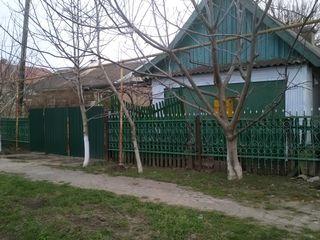 vand casa in or.Causeni,centru (pret negociabil)