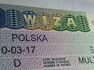 Польская Виза, Viza Poloneza