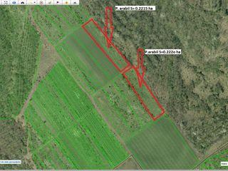 Colonita. Vind teren arabil, 0.5-3 ha. Pe foto sunt aratate numai citeva loturi