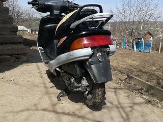 Honda Bali af32