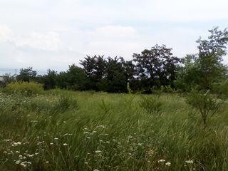 Хороший участок (на поле чудес), в тихом, спокойном месте !