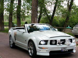 Chrysler 300C, Mustang, PT Cruiser, S klas - nunta, escorta, kortej