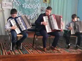 Lectii de acordeon