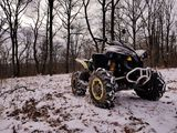 Can-Am (BRP) Renegade 800