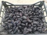 vindem prune uscate fără fum! Avem și acte.