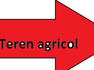 Teren agricol 45 ari sat.cojusna