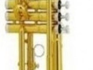 Trompetă muzicală Parrot 6416L-1. Livrare în toată Moldova. Plata la primire