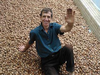 Продаю ореховый сад