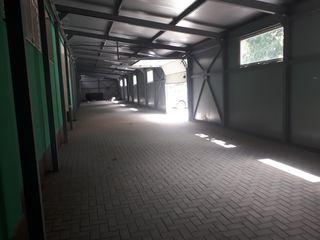 Сдаем производственно-складское помещение 220м2 по ул. Алба Юлия, сект. Буюканы !