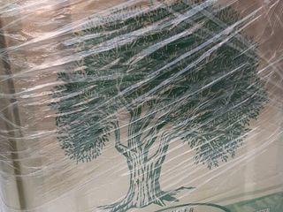 Vând ulei de măsline de casă recent adus din Grecia