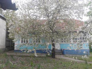 Casa in s. Cojusna