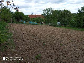 Vind 12 ari linga padure, la doar 21km de la Chisinau!