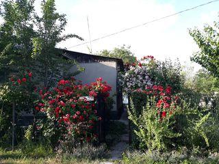Продается дом в г. Дубоссары